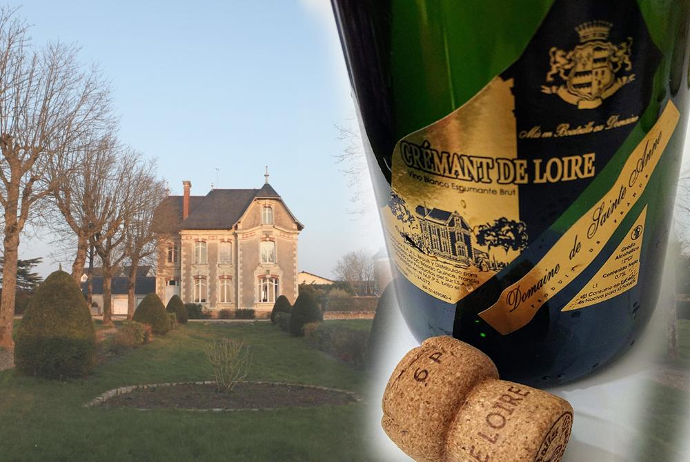 Vinos: burbujas del valle de Loira en cata