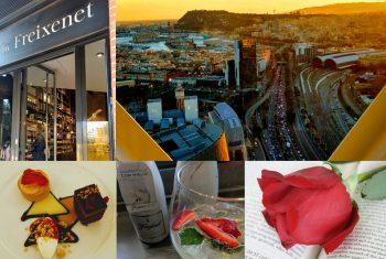 Vinos: Un viaje de novedades con Freixenet