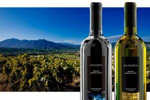 Lee más sobre el artículo Vinos: el Sur de Italia en 10 copas