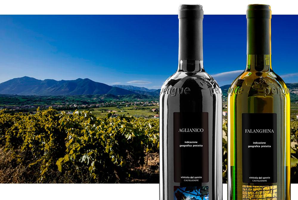 En este momento estás viendo Vinos: el Sur de Italia en 10 copas