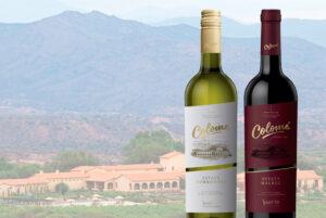 Lee más sobre el artículo Vinos Colomé: del norte de Argentina a Venezuela